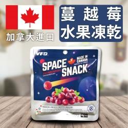 加拿大進口蔓越莓水果乾
